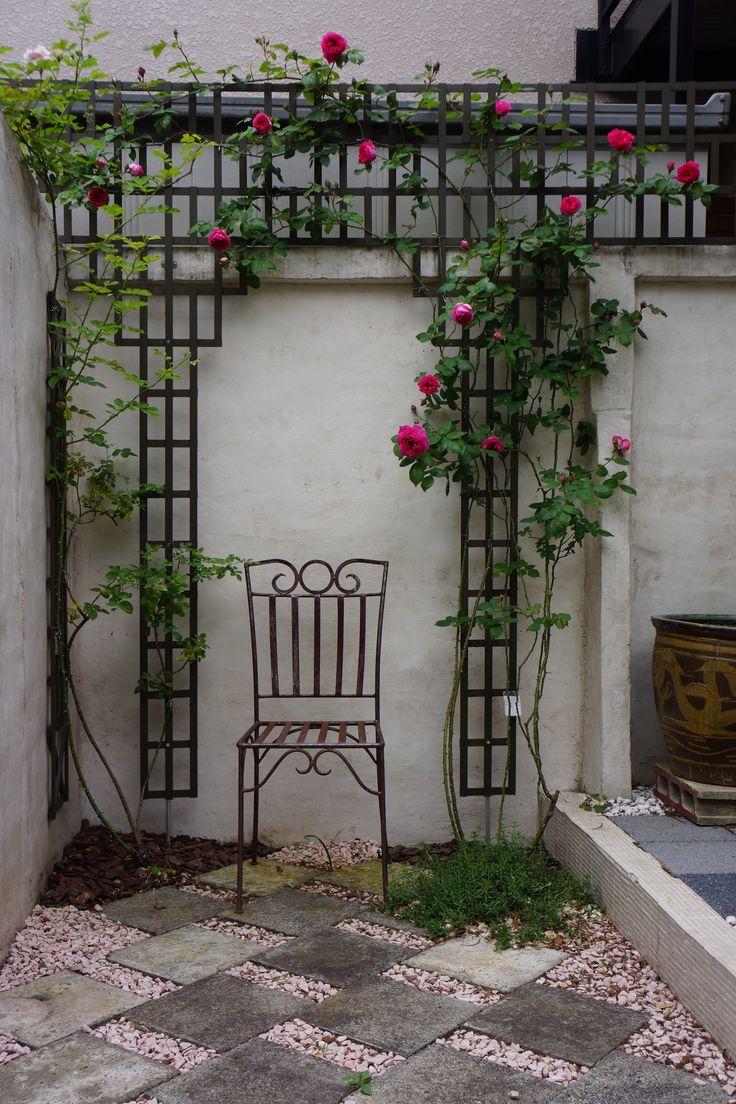 Garden Idea, Rose, Patio Desing, Trellis, Lattice, DIY