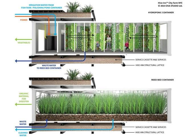 Repurposed shipping containers may be building blocks for modular vertical urban farms : TreeHugger