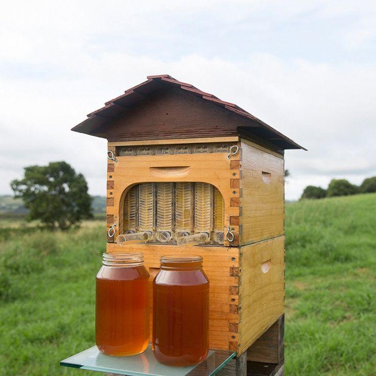 亚马逊中国: トウタク(Taotuo)6個セット 養蜂器具 養蜂 巣箱 対応 Flow Hive フローハイブ ハニカムボード 自動 採蜜 安全 便利 操作 簡単 養蜂家 役に立ち: taotuo