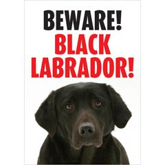 Beware Labrador (Black) Gate/Door Sign