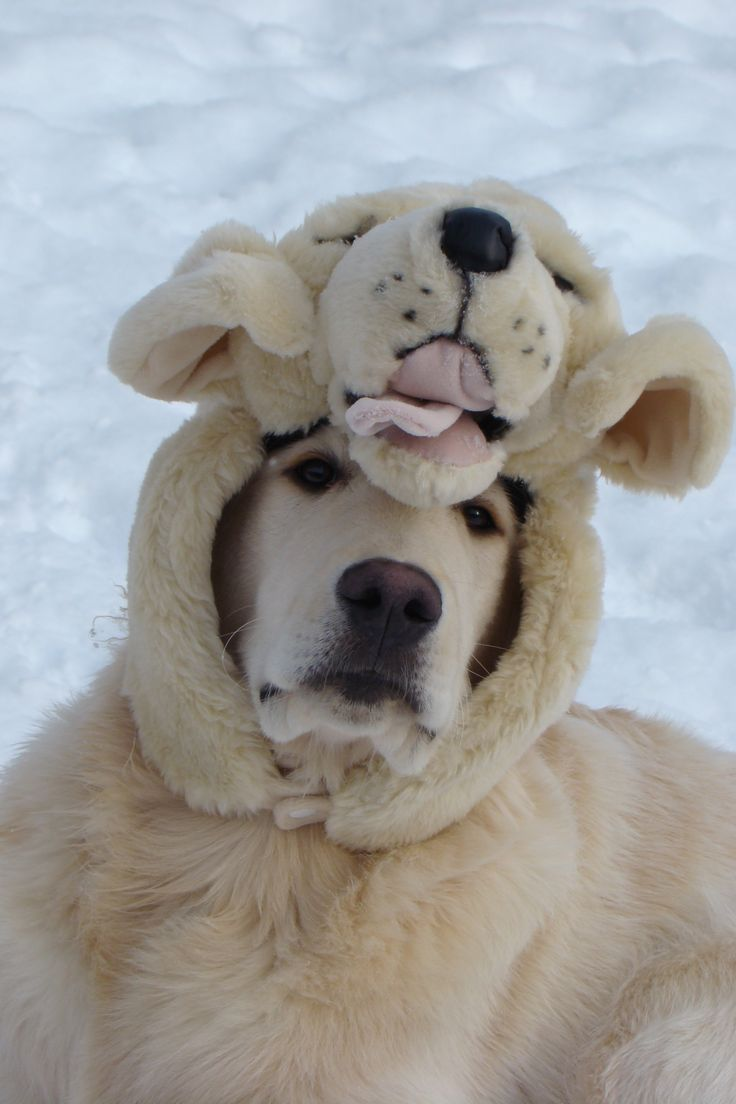 Bundle up!