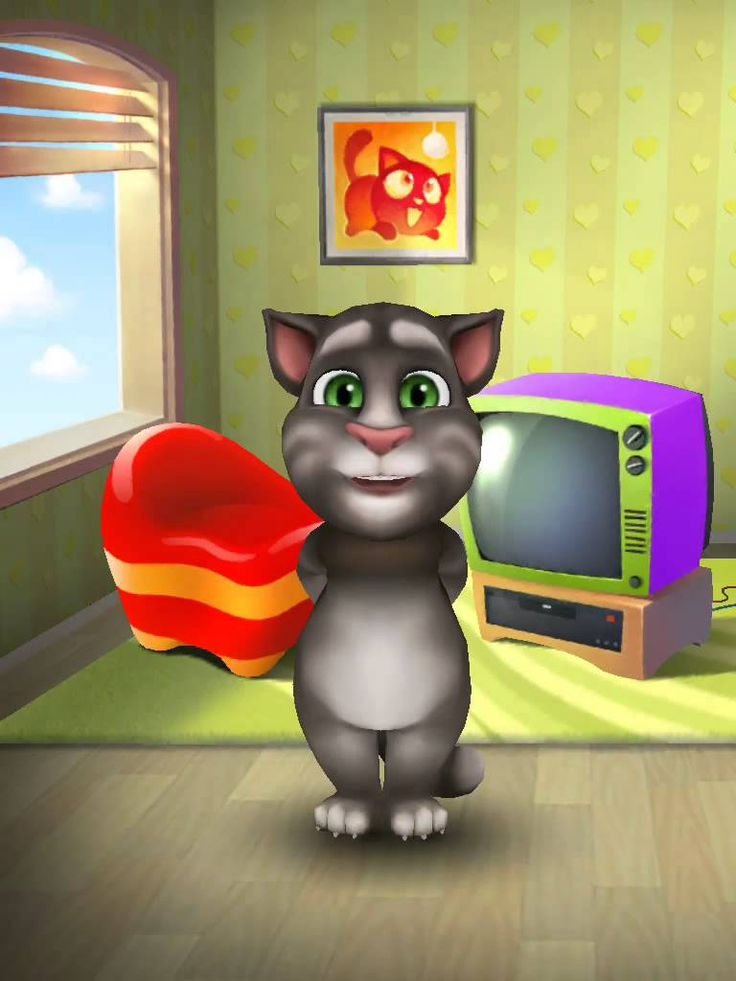 [My Talking Tom] My talking tom