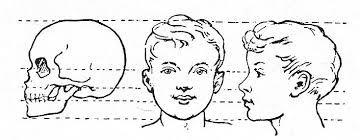 Afbeeldingsresultaat voor tekening boom met gezichten