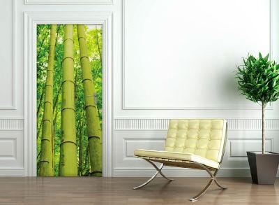 Ponad 25 najlepszych pomysłów na Pintereście na temat Stickers bambou