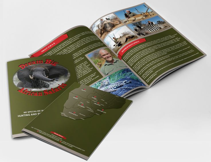 Dream Big African Safaris Brochure/Company Profile Design