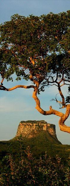 Parque Nacional da Chapada Diamantina, estado da Bahia, Brasil.