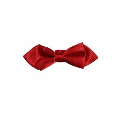 Noeud Papillon rouge ou gris anthracite avec pochette uni - Place du Mariage