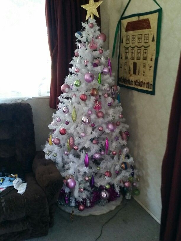 Our 2014 Christmas tree