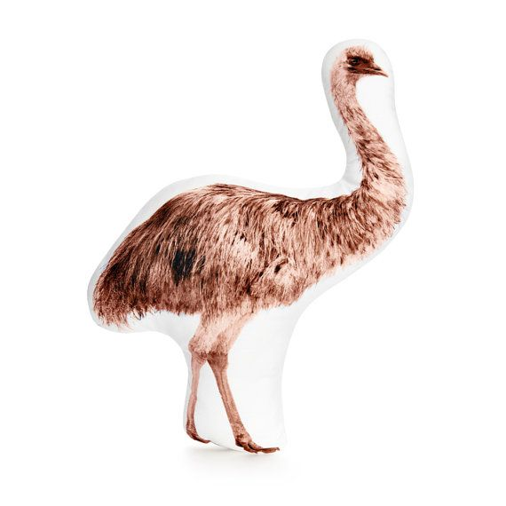 Emu Australian Bird Australian Animal Australia Emu