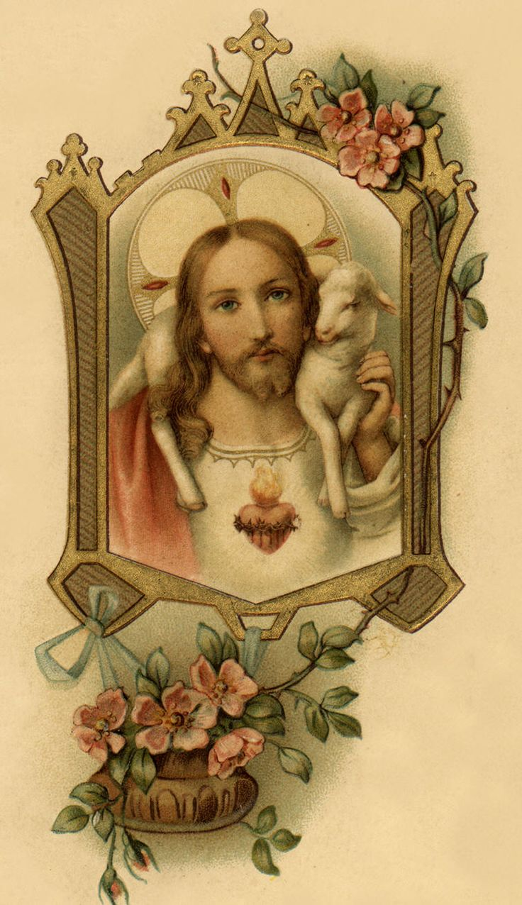 """Efficacious Novena to the Sacred Heart of Jesus (St. Padre Pio said this every day) ~~ Scroll down """"God's Flower Garden"""" until you reach this image and the Novena."""