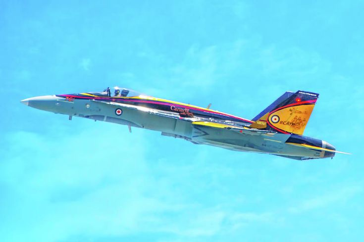 Canadian Armed Forces Cf 18 Hornet Photograph by Mark Andrew Thomas