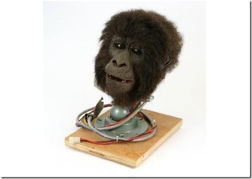 Original Movie Prop – Gorillas in the Mist – Animatronic Baby Gorilla Head – Authentic  Pinteresting Movie Props  http://www.pinterestpatron.com/2012/09/pinteresting-movie-props/
