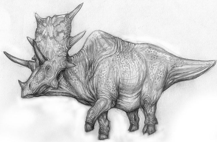 The Ngoubou is a cryptid from the savanna region of Cameroon. It is said to have six horns, hooves, and fights elephants for land, despite its smaller size (about the size of an ox, according to locals). It is probably a surviving ceraptosian based on the given characteristics. In November 2000, William Gibbons did some preliminary research in Cameroon for a future Mokele Mbembe. He was accompanied by David Wetzel. While visiting with a group of pygmies they were informed about an animal...