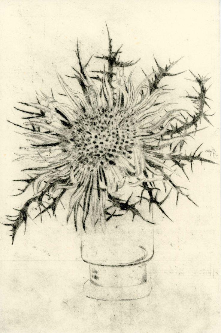 Fiore spinoso, 1985, puntasecca su zinco di Toni Pecoraro.