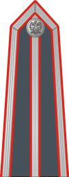 Staff Sergeant rank insignia [Starszy Sierzant] (Shoulder board), Polish Air Force, 1936-1938. Afterwards the insignia was changed and instead of the horizontal bar featured two down-turned chevrons. In the later form the rank was continued and the new insignia is still in use today.