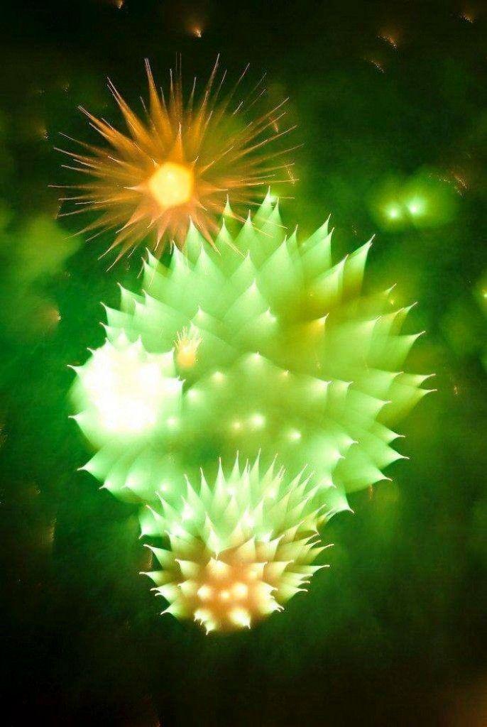Gambar Foto efek hasil jepretan kamera terhadap kembang api