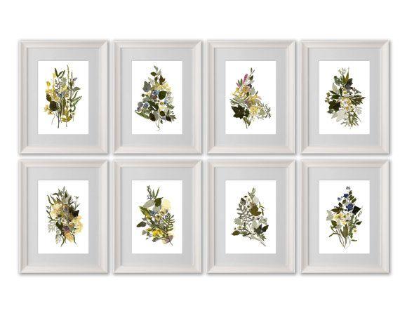botanical print set pressed flower art set of 8 prints herbarium pressed flower frame dry flower