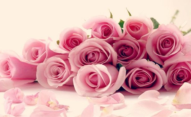 Agua de Rosas propiedades y beneficios