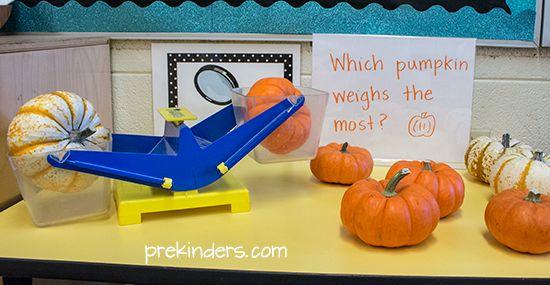 Pumpkin Math: Weighing