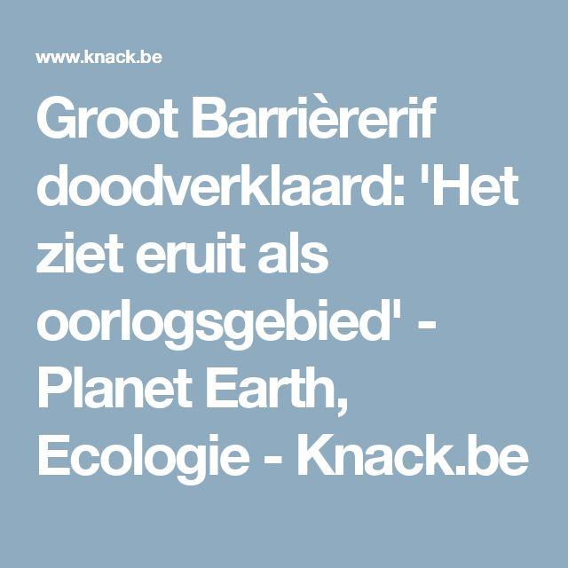 Groot Barrièrerif doodverklaard: 'Het ziet eruit als oorlogsgebied' - Planet Earth, Ecologie - Knack.be