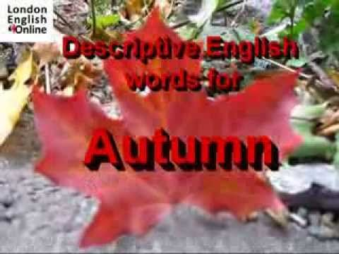 English vocabulary for Autumn. Autumn is a time of change. Learn some vocabulary to help you describe what is happening outside your window. Try the vocabulary quiz-let here: http://quizlet.com/_g8c5r