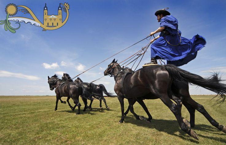 Hortobagy horse show