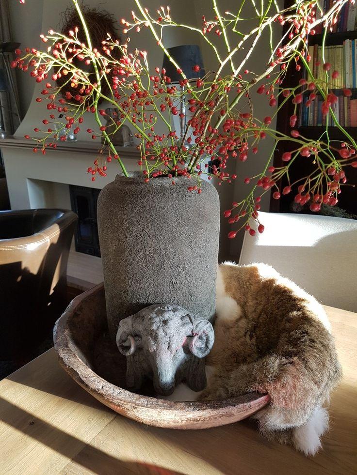 Pot in olijfbak met rozenbottels en ramskopje