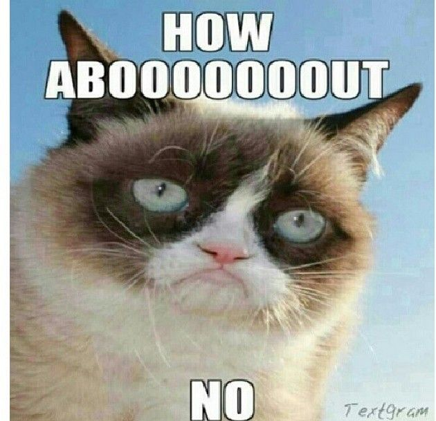 Grumpy Cat (born April 4, 2012), real name Tardar Sauce, is a cat and Internet celebrity known for her grumpy facial expression.