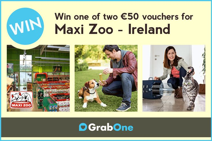 Win a €50 Voucher for Maxi Zoo - http://www.competitions.ie/competition/win-a-e50-voucher-for-maxi-zoo/