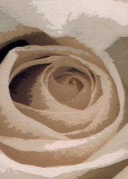 Tapis fait main, hand tuft de luxe 100% laine, collection Floral Fantasy dessin RR-04-28