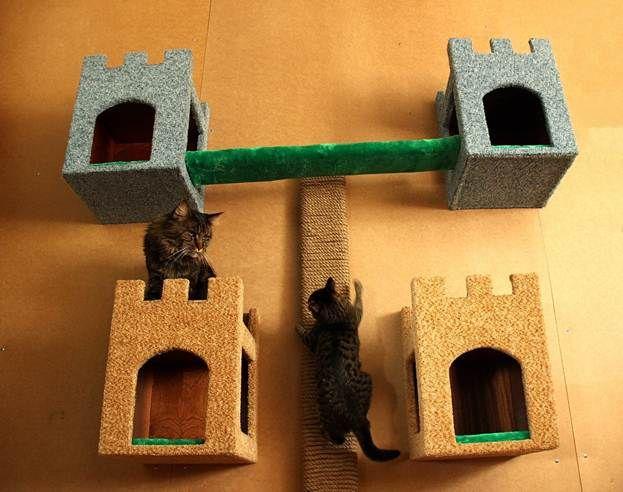 Кошачий аттракцион своими руками