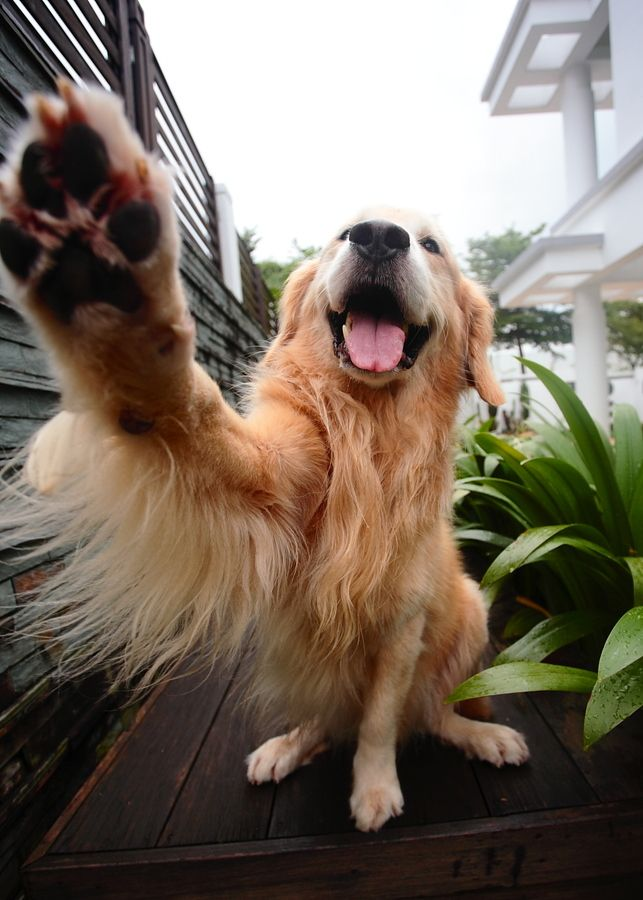 Gimme five.