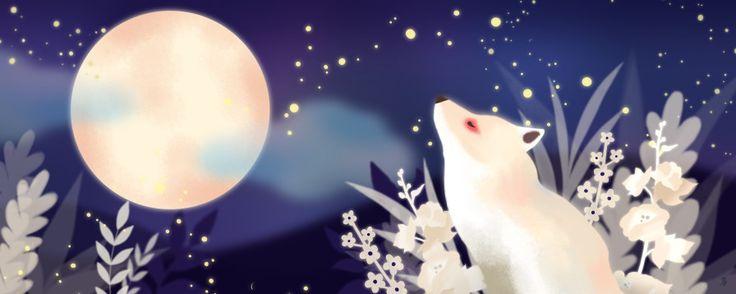 fox,illustration,stars,moon,night,dream,