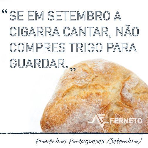 #provérbios #portugal #padaria #pão #setembro