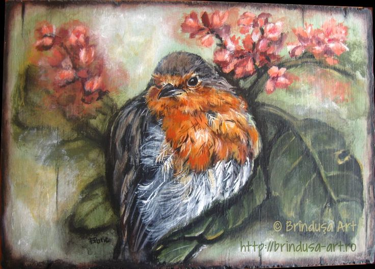 Brînduşa Art Acrylic painting on wood. Painting inspired by a robin photo from https://www.facebook.com/june.sarsby/ (used with permission). 27 x 19,5 cm, tablou în culori acrilice pe lemn. Pictură inspirată de o fotografie de la https://www.facebook.com/june.sarsby/ (folosită cu permisiune). #woodpainting #picturapelemn #birds #pasari #robin #macaleandru #nature #acrylics #acrilice #art #BrindusaArt #handmade #handmadeforsale