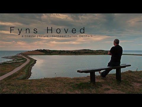 Fyns Hoved - a coastal pasture - northeast Funen, Denmark. - YouTube