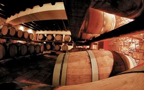 Oak barrels in the wine cellar with
