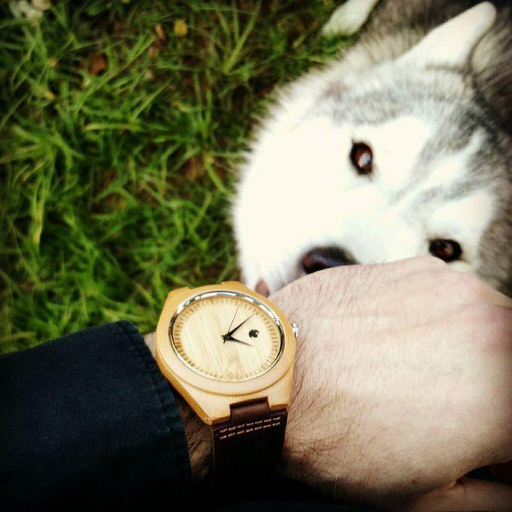 El nuevo #reloj Castor Origen Foresta viene con correa de cuero café oscura que combina muy bien con la madera de bamboo. Con motor Miyota Citizen por $29.900 y envío gratis a todo #chile . Ven por el tuyo en https://www.castor-watches.com whatsapp: 56994033705 #castorwatches #castorforesta #watch #relojes #watches #relojesdemadera #woodenwatch #bamboowatch #accesorios #shevchenkoelperro