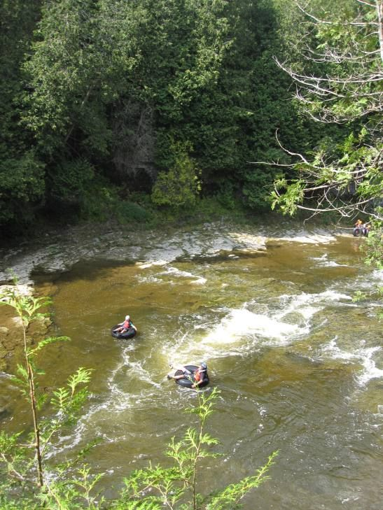 """Elora Gorge, Ontario - And then there's the Elora Quarry, also known as the """"old swimming hole"""". This is a 2 acre former limestone quarry surrounded by 40 foot cliffs. A stunning backdrop and a really cool place to swim. - TRAVEL MAMMAL"""
