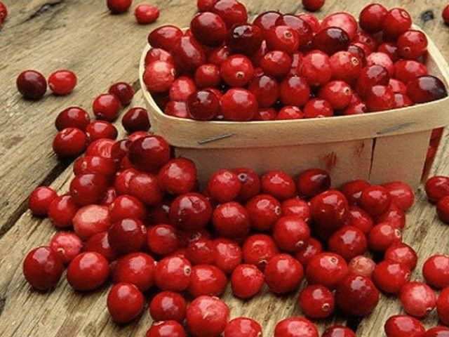 Рецепты из клюквы http://feedproxy.google.com/~r/anymenu/hMaC/~3/36mZs9F9J9I/  Из клюквы можно приготовить много полезных и вкусных блюд. Эта ягода обладает уникальными свойствами, благодаря которым помогает в профилактике многих заболеваний. Каждый человек хотя бы раз в жизни слышал о народной медицине и целебных свойствах того или иного растения. Одним из таких чудесных аптекарей является клюква. Ягоды клюквы Клюква — отличный защитник организма в борьбе