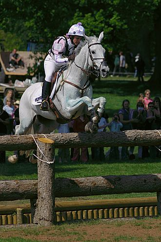 <3 to watch eventing - never one to want to try it - plus my arabian wasn't to keen on my thoughts of jumping her over stadium fences to begin with.....let alone solid built natural objects.