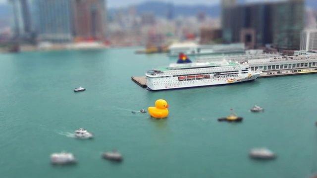 Rubber Duck Hong Kong 2013