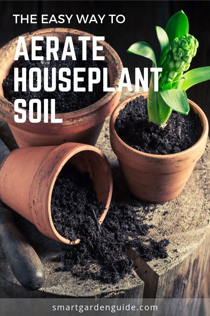 Guide To Aerating Houseplant Soil Indoor Plant Soil 400 x 300