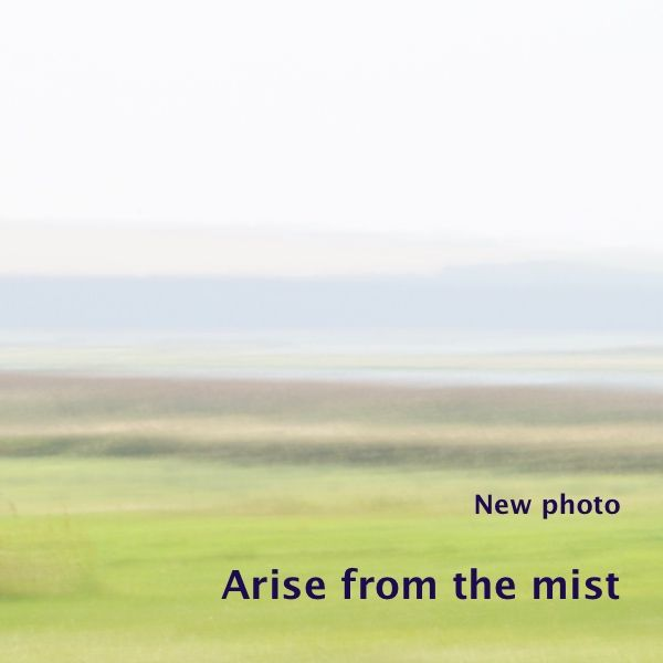 I added a newphoto to the series 'Beyond the horizon', part of the gallery 'Untouched land'. I made this photo 'Arise from the mist' one and a half month ago at…