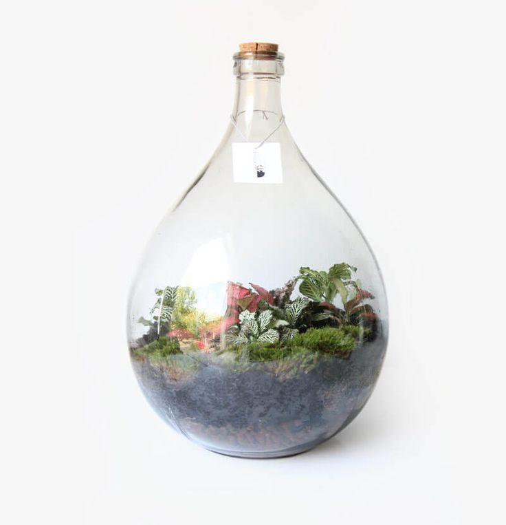 Big Prásinos 15L ecosysteem - Wonderlijk Woud