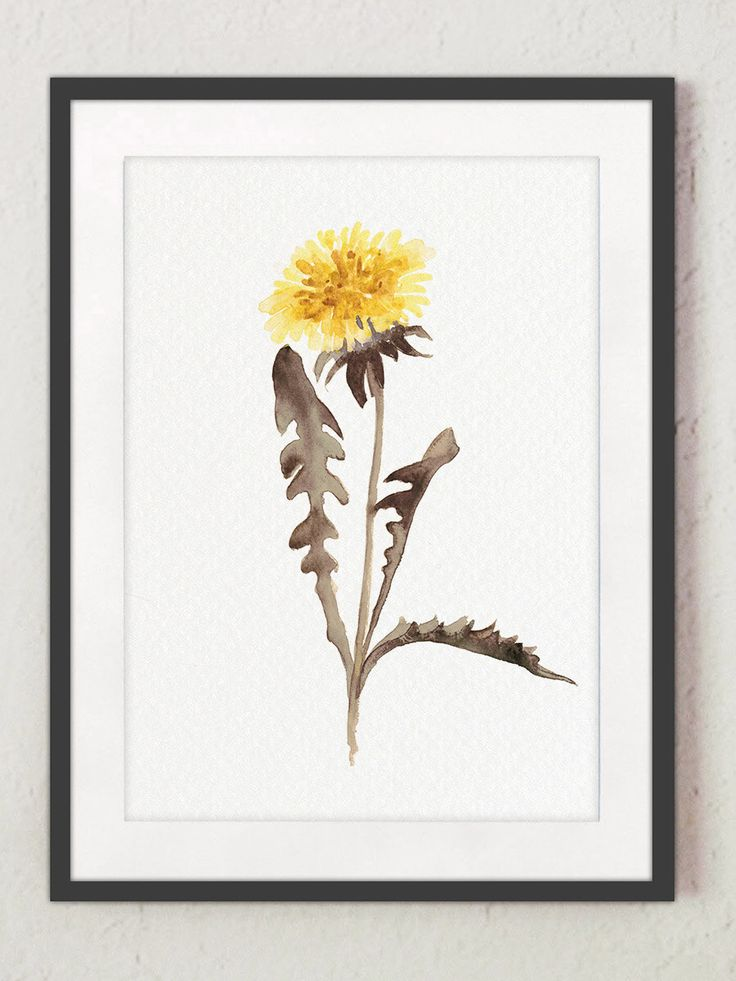 Dandelion Watercolor Painting Abstract Flower Yellow Wall
