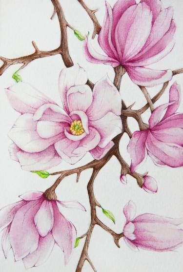Essential Top - Watercolor Magnolias by VIDA VIDA Best Wholesale GmGBUMEL3