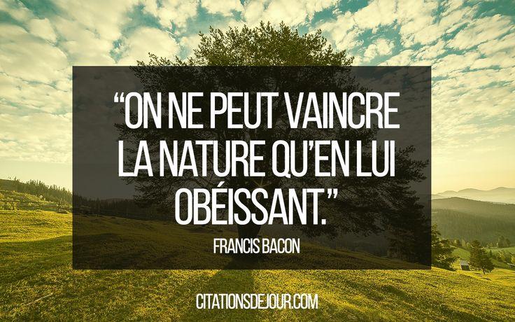 Voici les 40 plus belles citations sur la nature