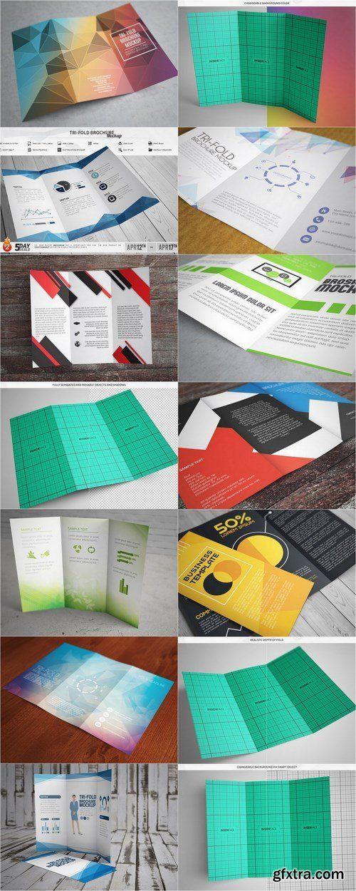CM - Tri-Fold Brochure Mockup 635994