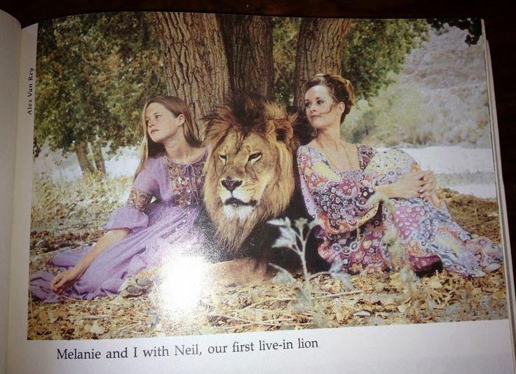 Tippi Hedren con la figlia Melanie Griffith, assieme al loro leone domestico!